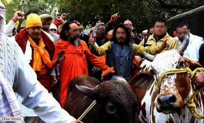 Photo of Human Rights Watch Report on Cow Vigilante Attacks on Muslims