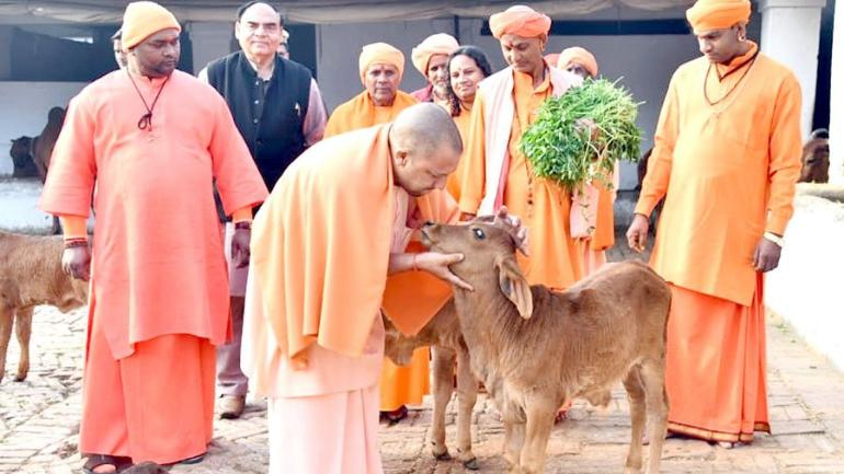 Photo of Hate comments of BJP ministers, office bearers on Cow Protection
