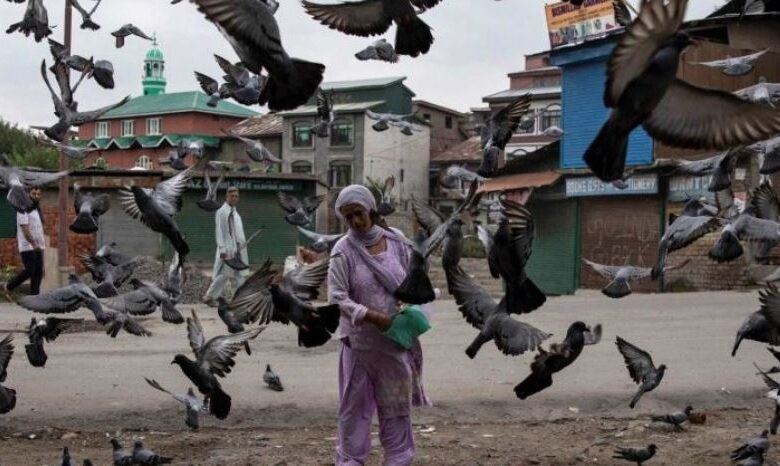 Photo of Kashmir: UN Human Rights Experts Express Concern on Domicile Law; 'Baseless' Fears Says India